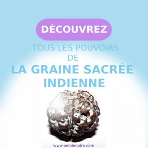 Graine sacree Indienne